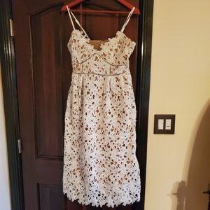 Sans Souci Lace midi dress